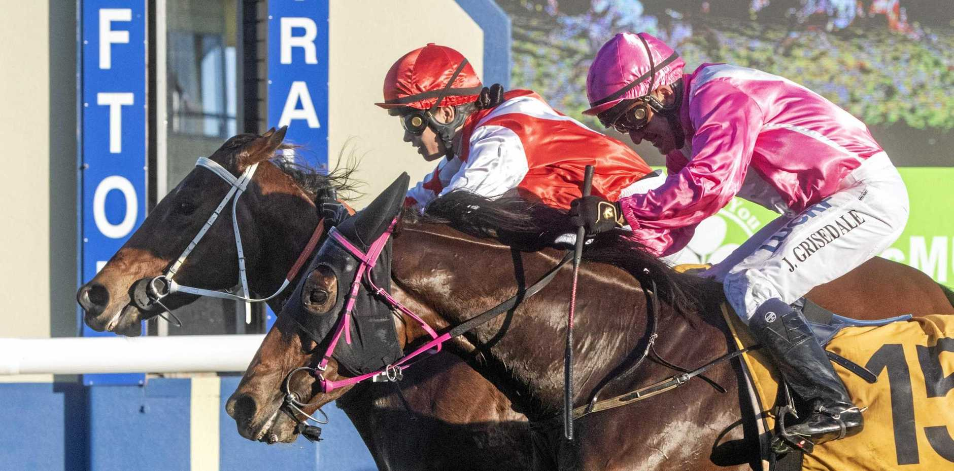 GOT THERE: Malea Magic (inside) tips out Evopex in the John Carlton Cup on Westlawn Finance Race Day.