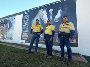 PIT PONY: Town marks 100 years of mining with new mural