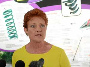 HANSON: Hold a royal commission into Family Law system