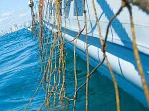 Shark nets removed as rough seas set in