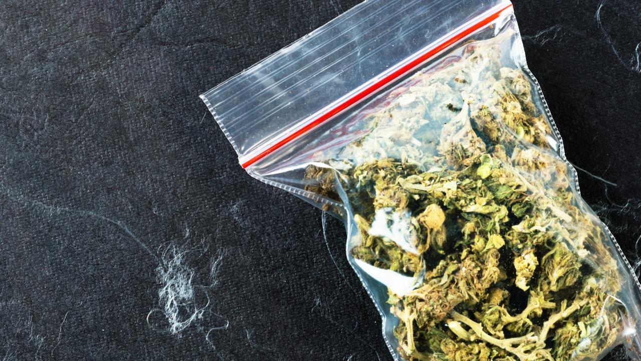 Should marijuana be made legal?