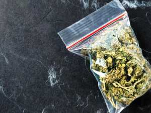 Woman claims not knowing drugs were illegal after car bust