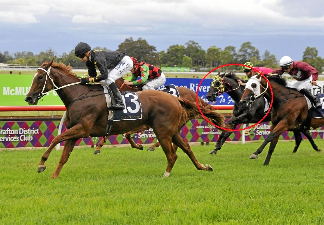 Scott Henley-trained Rakhish (pink silks) ran fourth in the $150,000 NRRA Country Championships qualifier won by Matthew Dunn-trained La Scopa at Clarence River Jockey Club on 17th March, 2019.
