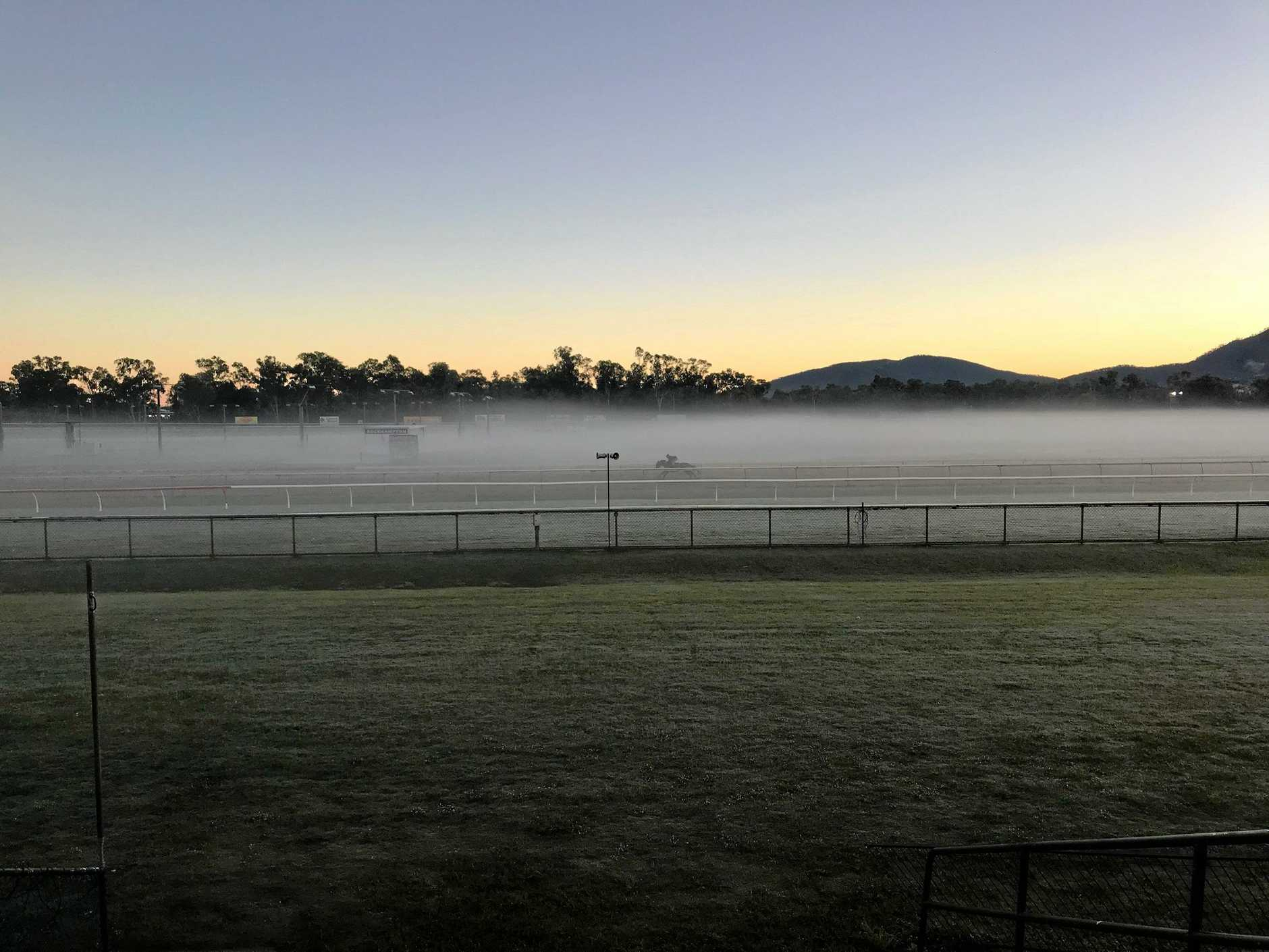 SERENE SCENE: This picture of a lone horse doing early morning track work at Callaghan Park is a far cry from the transformation the racecourse will undergo for today's Newmarket and tomorrow's Cup meetings where almost 200 horses will run.