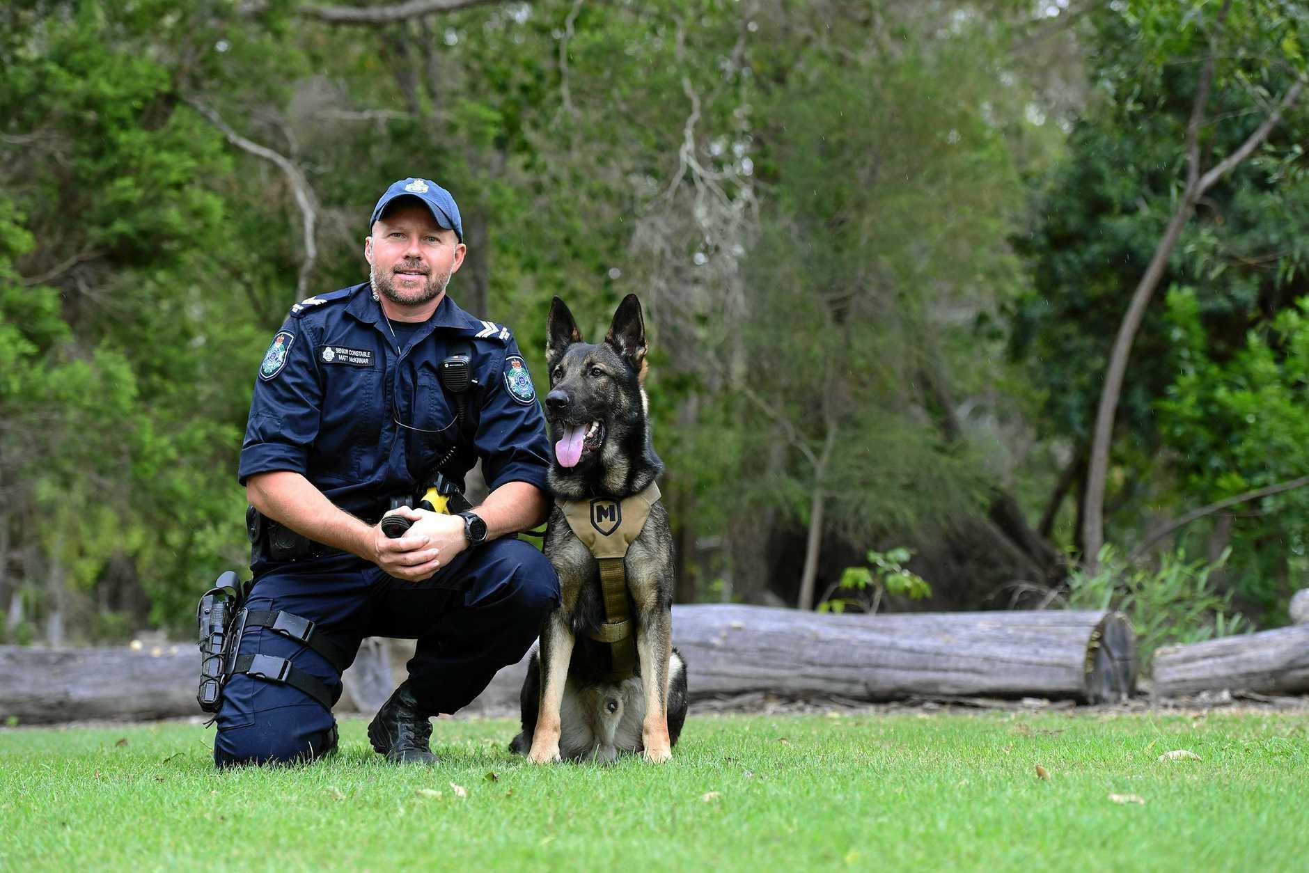 STINGER OPERATION: Senior Constable Matt McKinnar with police dog Stinger.