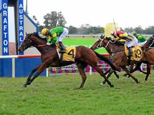 Ensby's Winkler back on track in South Grafton Cup