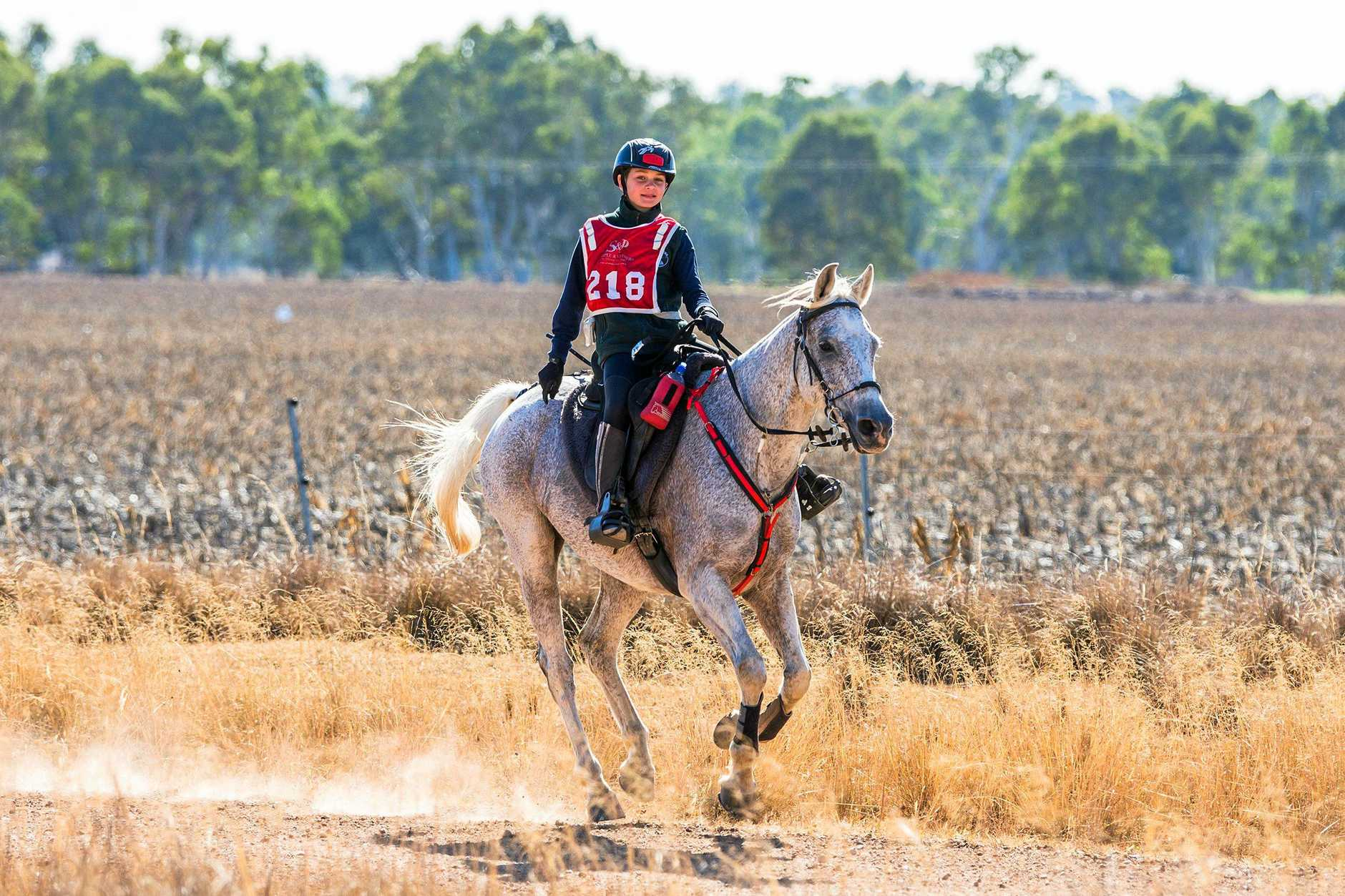 GOING THE DISTANCE: Zac Sample, 12 pictured here on Milo, is the youngest competitor in this year's Tom Quilty endurance ride. INSET: The Tom Quilty Cup will be on display at Stirling's Crossing.