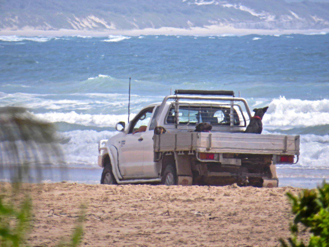 Drivers are being warned to stay off the dunes as big seas hit the Coast this weekend.
