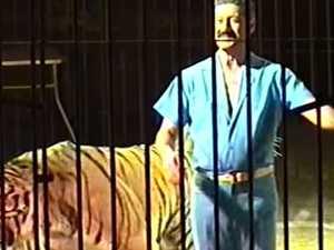 Tiger tamer 'torn to pieces' at circus