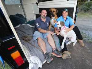 Reason couple were forced to live in horse trailer