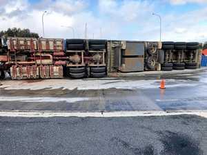 Cattle injured after livestock truck rolls near highway