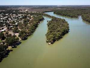 Shock probe into Australia's Murray-Darling water crisis