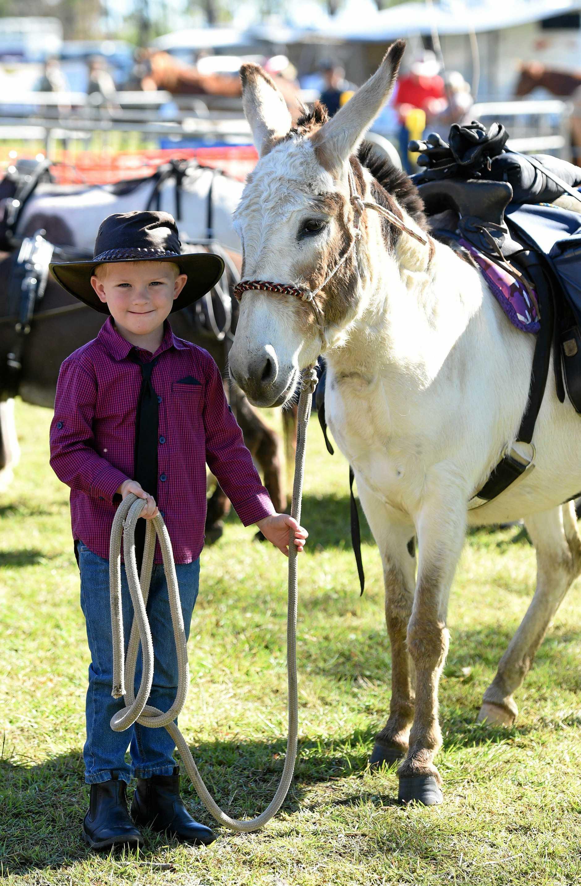 Zaiden Lillywhite,5, from Maryborough with Deigo the donkey at the last Tiaro Field Day.