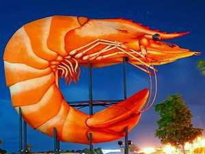 VOTE: What's the best quirky hashtag for the Big Prawn?