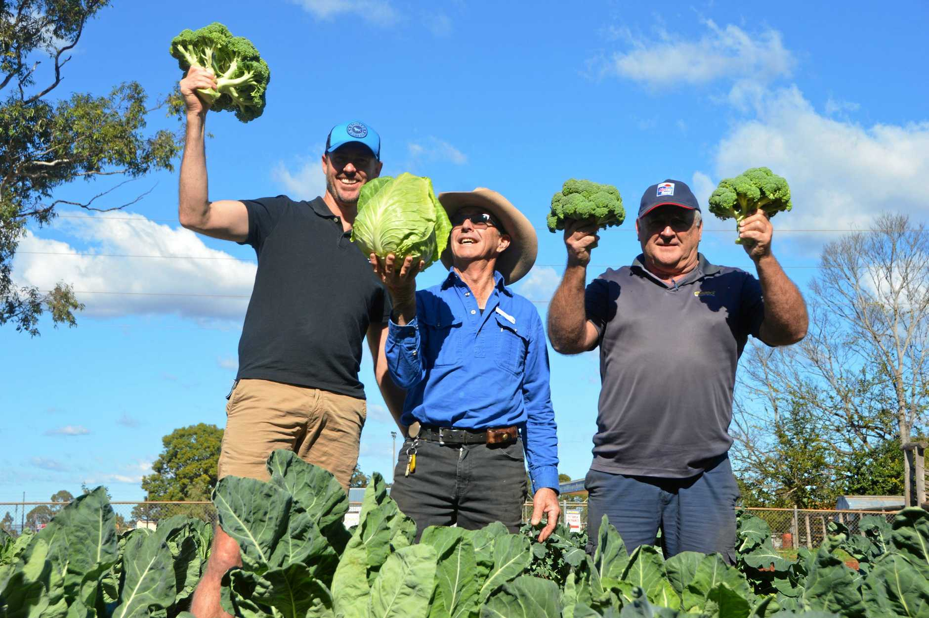 Kingaroy State High School agriculture coordinator Shaun Wick with agriculture assistant Don Rutley and Noel James from Norco Rural Kingaroy with Kingaroy State High School's latest produce.