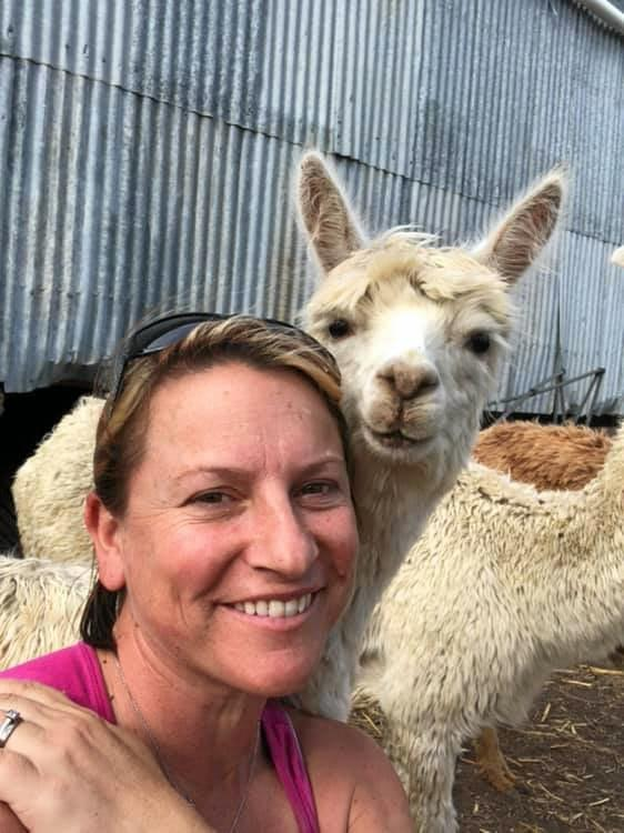 OPEN DAYS: Rosegum Alpacas' owner Michelle Hamilton with one of her furry friends.