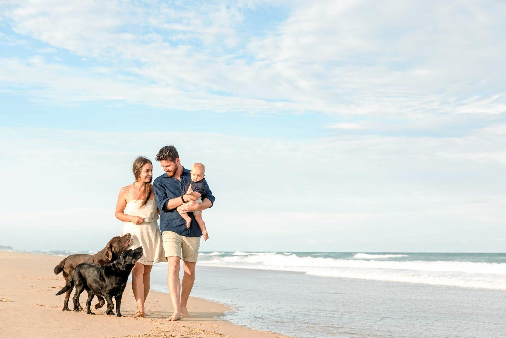 The Roux family are devastated after their dog Bear ate meth left in the dunes at their favourite Sunshine Coast beach.
