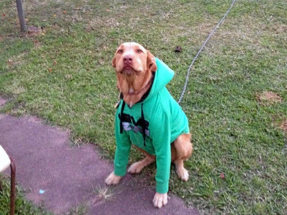 Miss Aida, Rocking her hoodie.