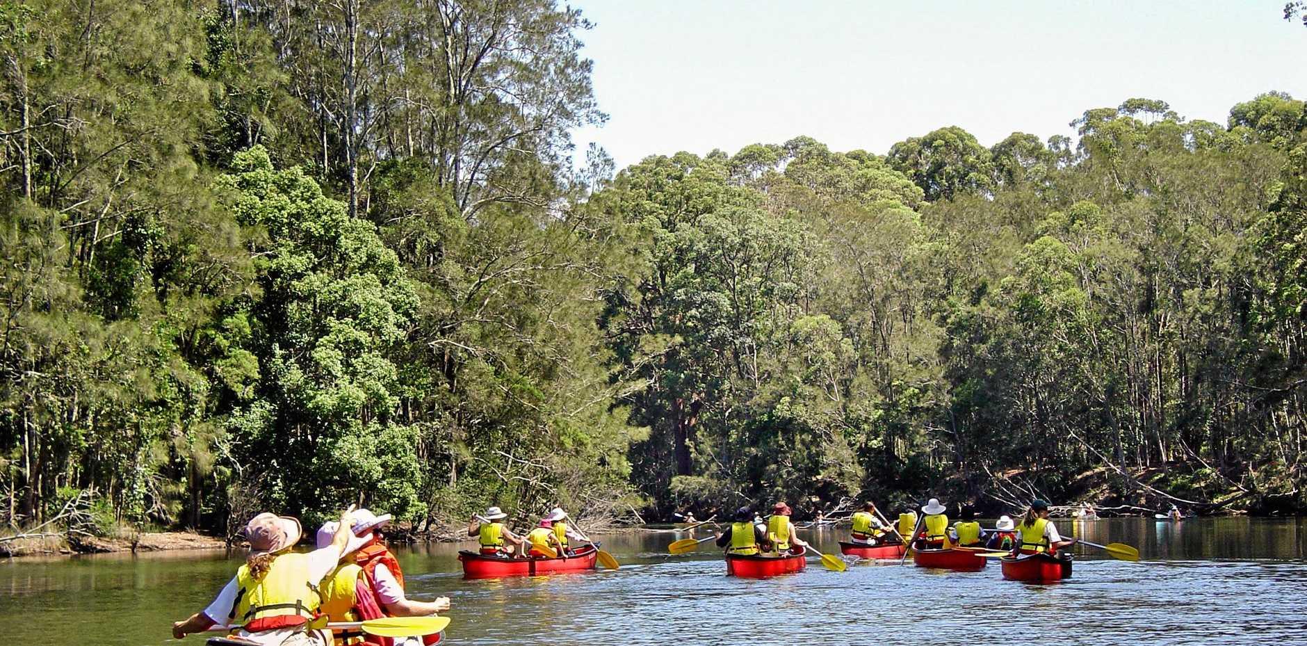 Bonville Creek canoe trail, Bongil Bongil National Park.