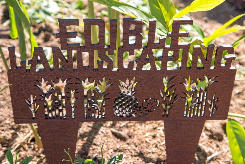 The Queensland Garden Expo has been attracting green thumbs for 35 years.