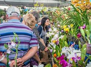 Queensland Garden Expo celebrates 35th birthday
