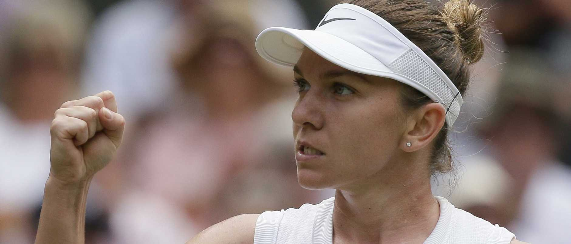 Simona Halep will face Serena Williams in the Wimbledon final.