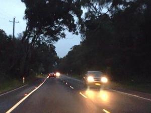 Strange encounters on Aussie roads