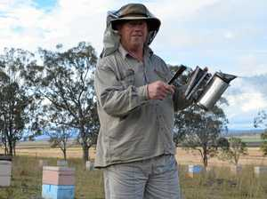 Calls for change as beekeepers fear looming lockout dates