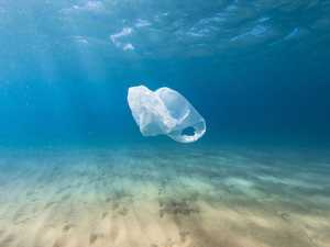 Plastic bag ban benefits 'over-estimated'