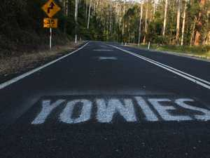 Close encounter of the furry kind: Far North yowie sighting