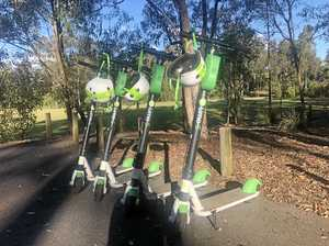 Electric scooters could be riding towards Sunshine Coast
