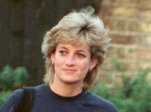 'Cunning' message hidden in Diana's outfit