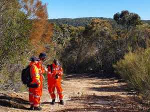 Missing bushwalker found at home