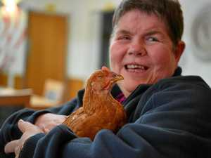 Pet chickens a real hoot with aged care residents