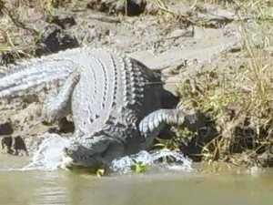 What a croc! Fisherman tells of Fitzroy River encounter