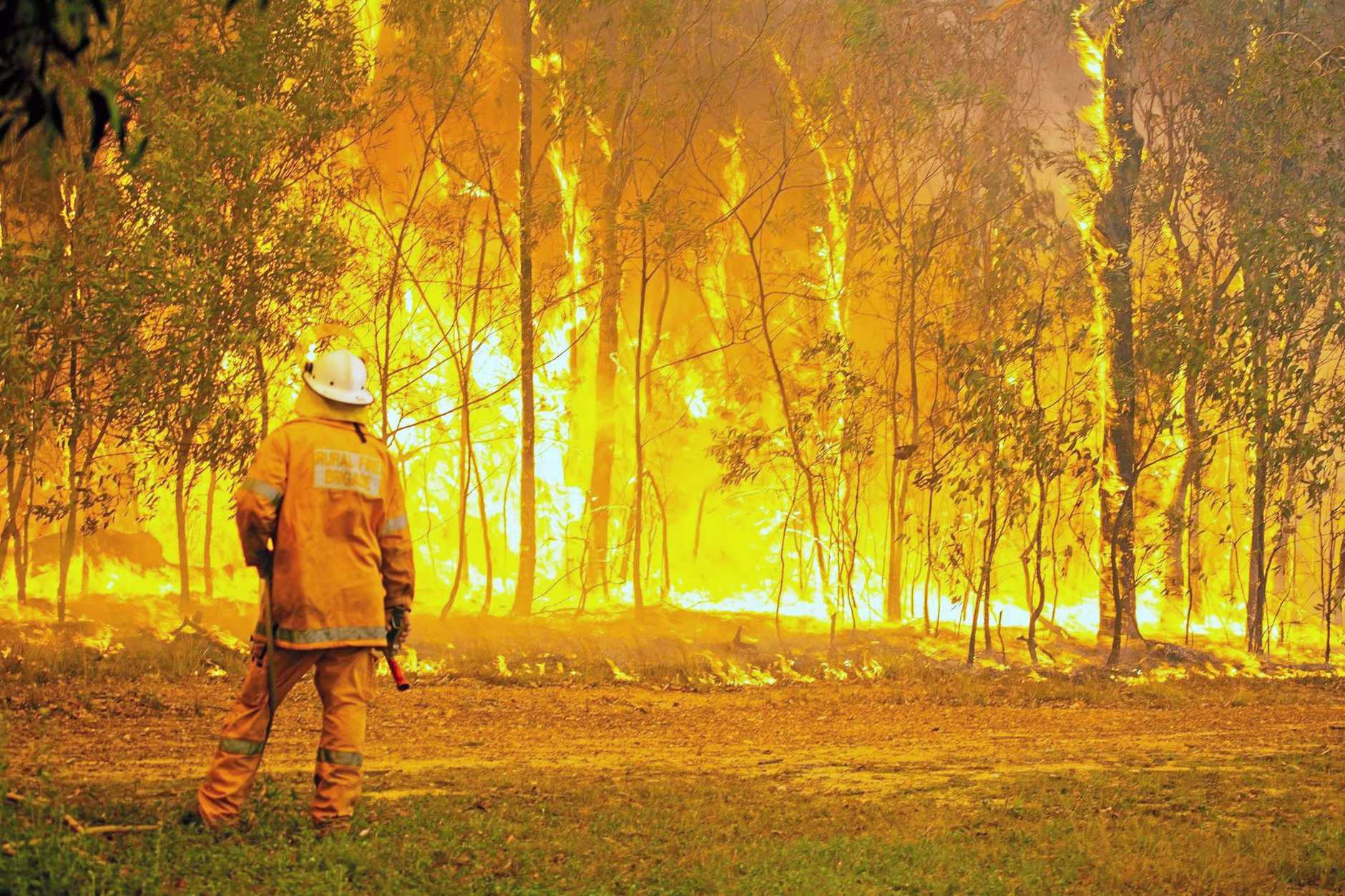 BURNING QUESTIONS: The LNP is not happy with the report into last year's fires.
