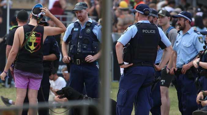 Police, sniffer dogs 'contributed' to festival deaths