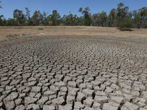 Darling Downs groups share in millions of drought funding