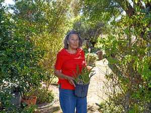 Beryl reflects on joy of tending a garden