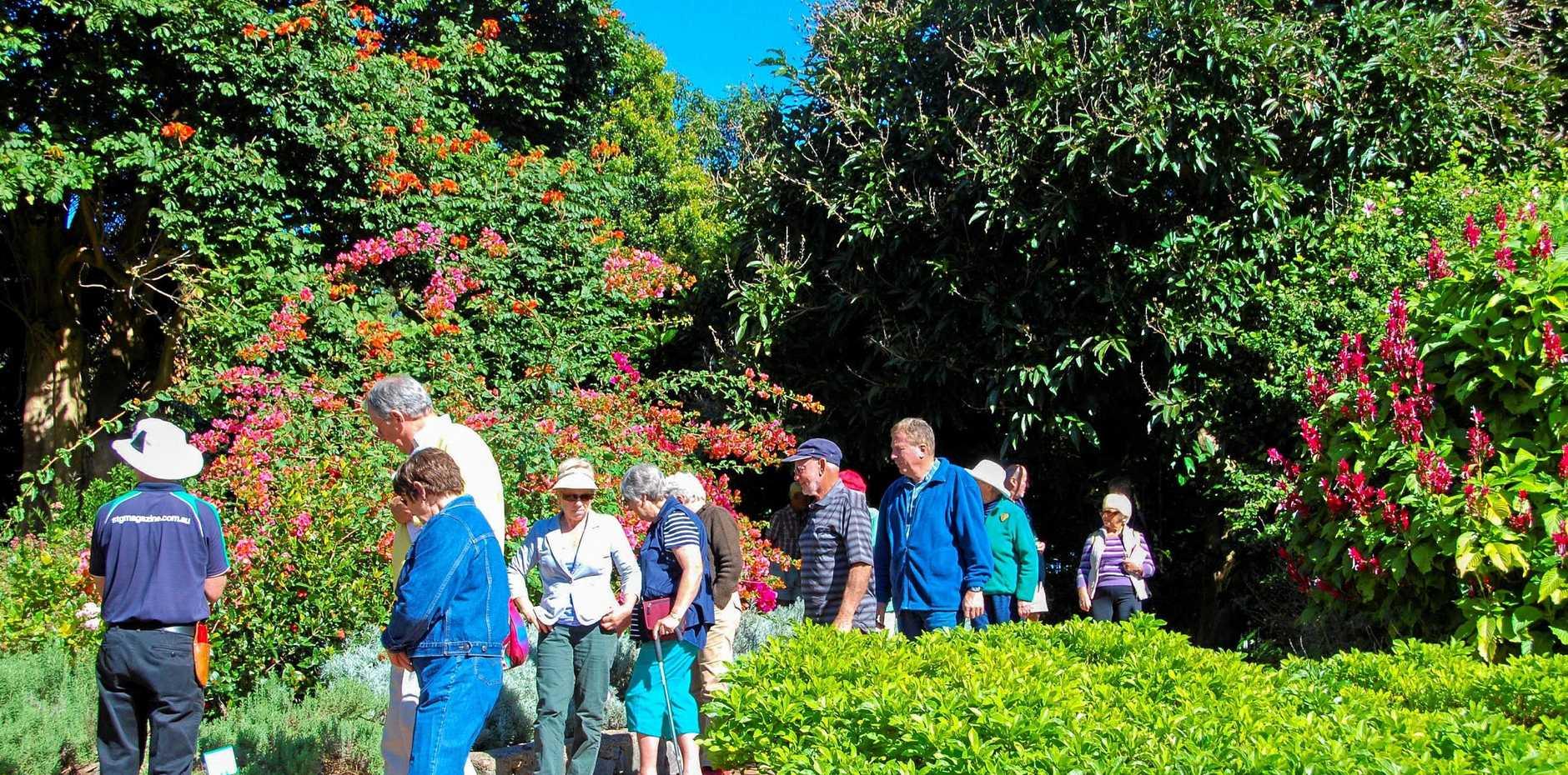 WALK: Visitors to Noosa Botanic Gardens on a recent tour walk.