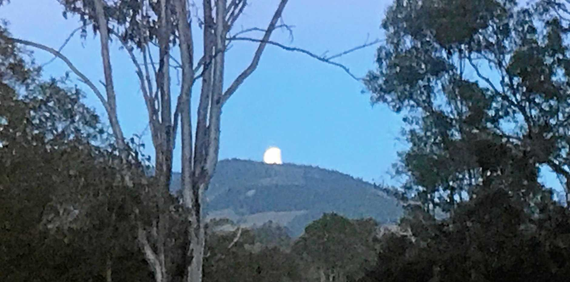 This morning's lunar eclipse, as photographed on a mobile phone at Pie Creek.