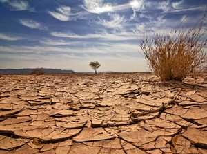 Desperate need for more action on delivering drought relief