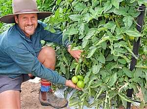 New tech at farm to create 30 jobs