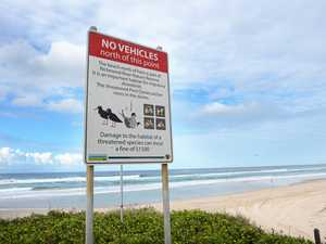 Call for cameras to catch beach hoons at South Ballina