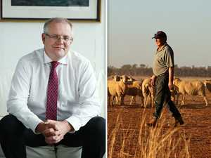 Backing the bush: Plan to build $100b industry