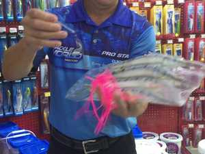 Fishing expert's tips for the Spanish Mackerel Shotoout