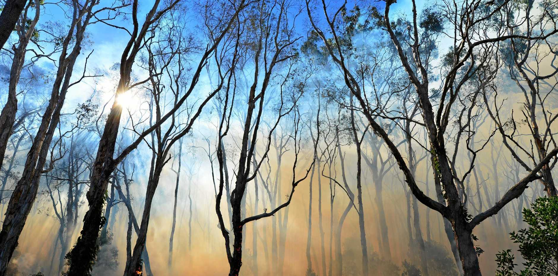 BUSHFIRE SEASON: The RFS are urging home owners to start preparing now.