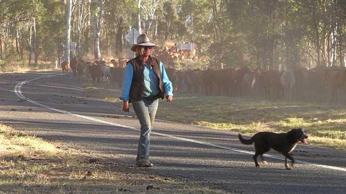 'Only generosity and Aussie spirit is getting us through'