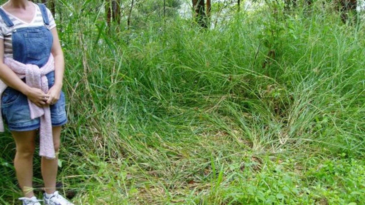 Pushed down grass which was the spot of an alleged Yowie sighting in Currumbin Valley in 2007.