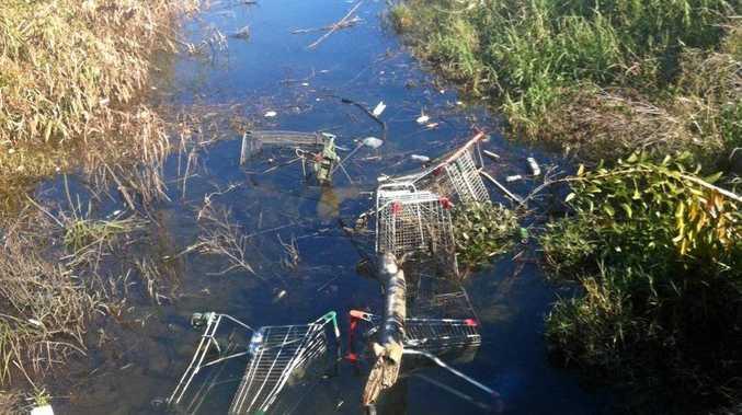 Dumped trolleys raise ire of Grafton resident